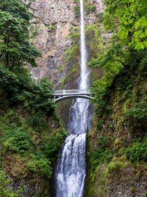 Multnomah Falls Full Length