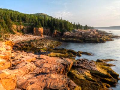 Acadia Morning at Monument Cove