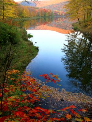Big Pond Autumn Paradise