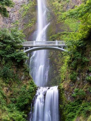 Multnomah Falls Vertical Panorama