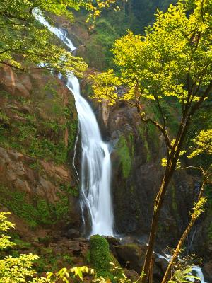 Silky Manatial de Agua Viva Waterfalls