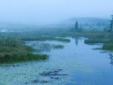 Misty Morning Panorama on Brown's Tract Inlet
