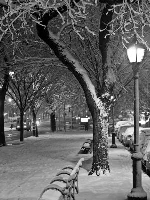 Eastern Parkway First Snow