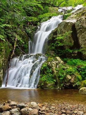Silky Wedge Brook Falls