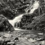 Dreamy Macintosh Brook Black & White
