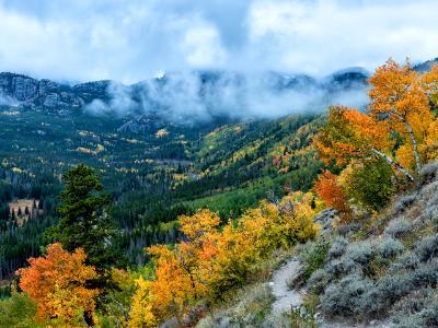 Bierstadt Moraine Autumn Mood
