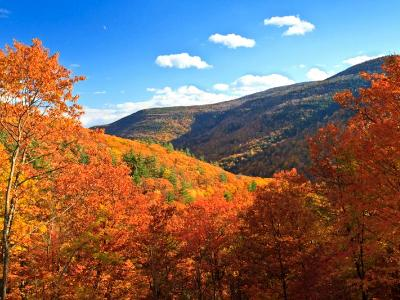 Kaaterskill Clove Peak Color