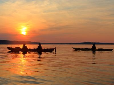 Sunset Kayakers in Bar Harbor