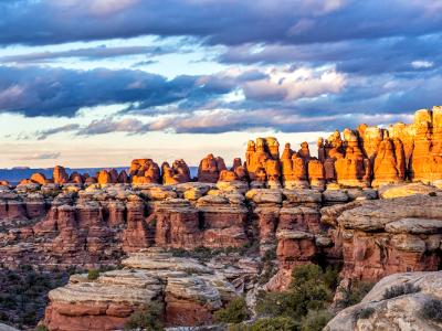 Moody Elephant Canyon Needles Sunset (Click for full width)