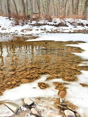 Esopus Creek Thaw