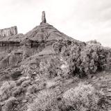 Castleton Tower and Juniper Tree