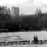 Central Park Winter Stroll