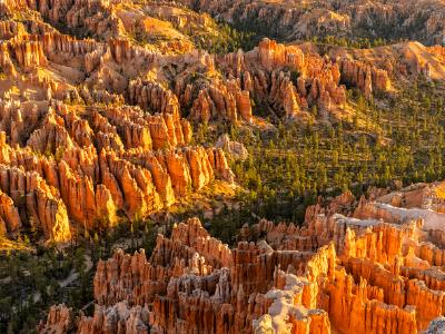 Bryce Point Morning View