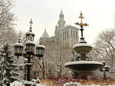 Snowy City Hall Park