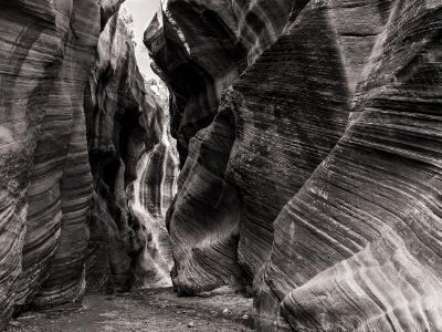 Willis Creek Narrows Black & White