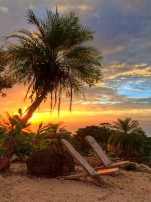 Palm Tree Chair Sunset HDR