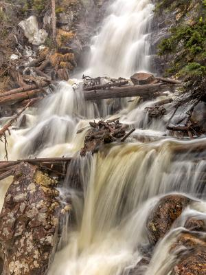 Silky and Misty Fern Falls in Spring