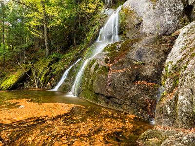 Moss Glen Falls Leaf Swirls