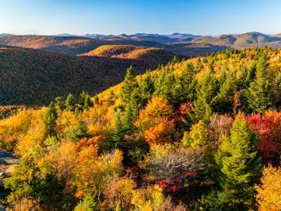 Adirondacks Autumn View from Hadley Mountain