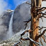 Fresh Snow in Yosemite Valley