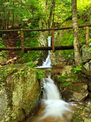 Footbridge over Wedge Brook