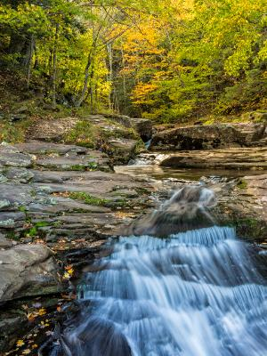 Spruce Creek Falls Autumn