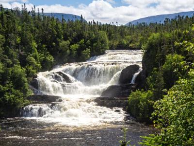 Newfoundland Forest Waterfalls