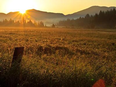 Adirondack Foggy Sunrise