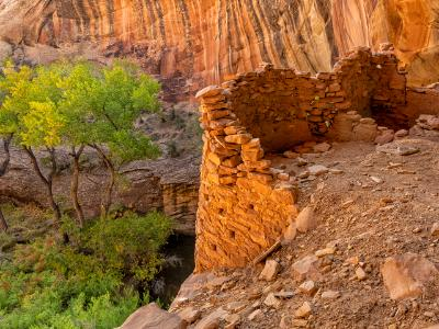 Monarch Cave Rounded Cliff Dwellings