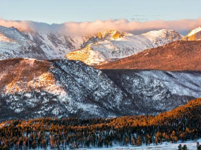 Continental Divide and Moraine Park Trees at Sunrise (Click for full width)