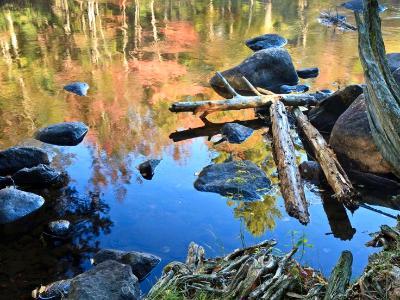 Raquette River Reflections