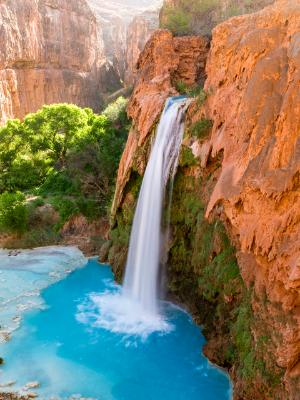 Havasu Falls and Pool
