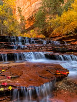 Many layers of Zion Red Waterfalls
