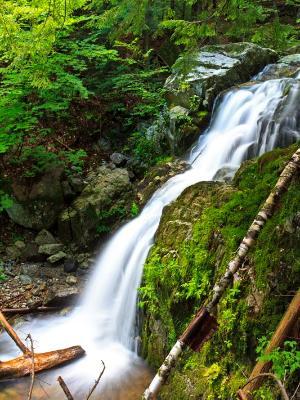Silky Adirondack Cascade