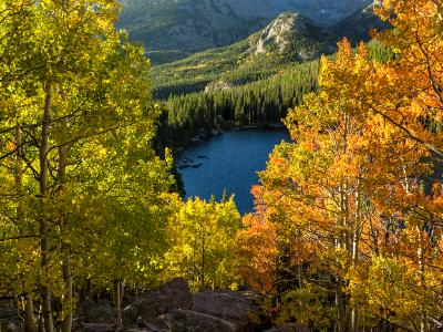 Yellow and Orange Aspens Above Bear Lake