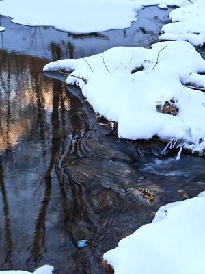 Big Pond Winter Stream