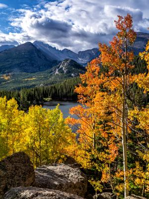 Longs Peak Clouds and Bear Lake Aspens
