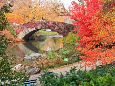 Central Park Pond and Bridge