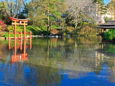 Japanese Pond-and-Hill Garden Panorama  (Click for full width)