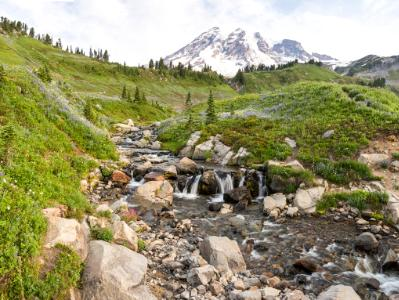 Edith Creek below Mt. Ranier