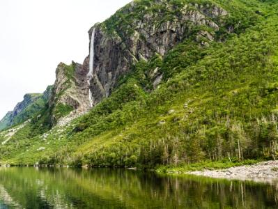 Western Brook Pond Forested Cliff