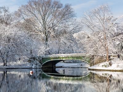 Lullwater Bridge Fresh Snow