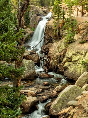 Alberta Falls and Glacier Creek