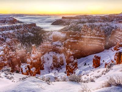 Pre-dawn Fog in Bryce Canyon