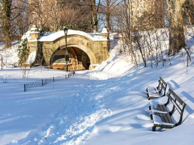 Prospect Park Benches in Snow