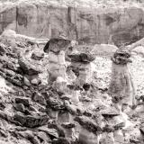 Rimrock Toadstools Black and White
