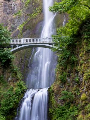 Silky Multnomah Falls & Footbridge