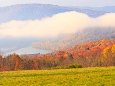 Reservoir Fog