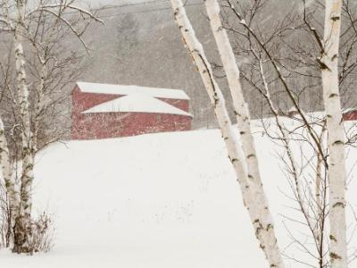 Winter's Day at the Round Barn