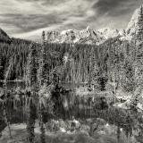 Fern Lake Black and White
